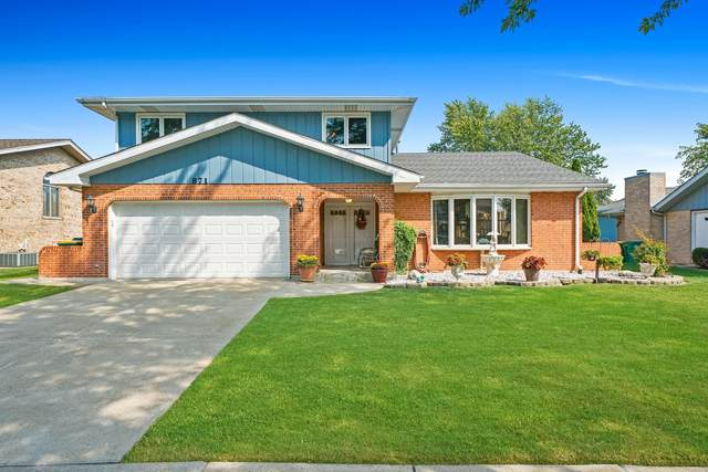 871 Young Street, Lemont, IL 60439 (MLS #11219368) :: The Wexler Group at Keller Williams Preferred Realty