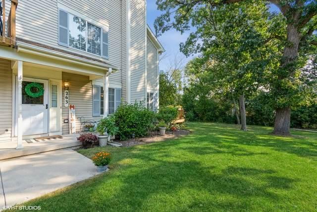 263 S Collins Street, South Elgin, IL 60177 (MLS #11219552) :: John Lyons Real Estate