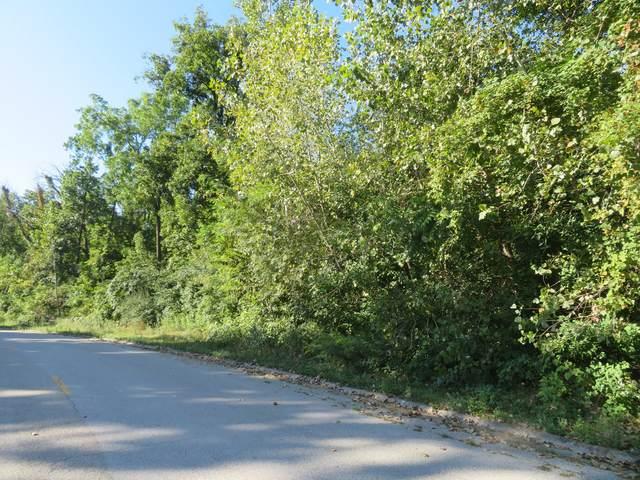 Lot 62 Shadow Wood Drive, Morris, IL 60450 (MLS #11219666) :: Littlefield Group