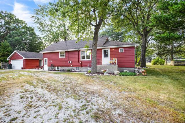 1995 Indiana Avenue, Lansing, IL 60438 (MLS #11219760) :: Touchstone Group