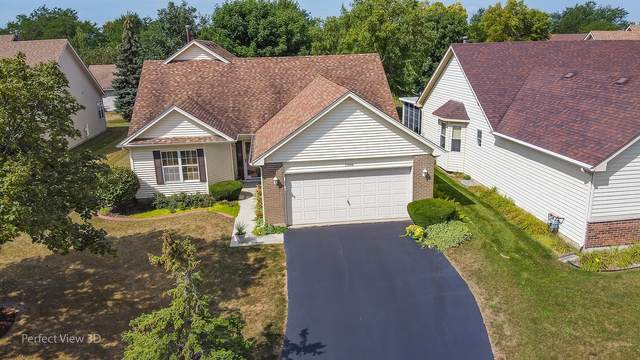 13488 S Silverleaf Road, Plainfield, IL 60544 (MLS #11219874) :: The Wexler Group at Keller Williams Preferred Realty