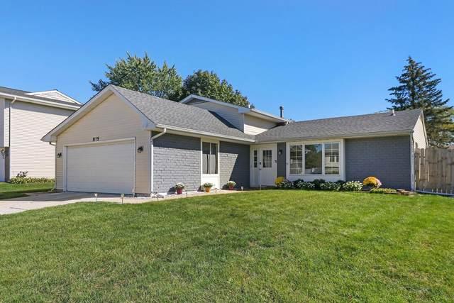 875 Hunter Drive, Roselle, IL 60172 (MLS #11220122) :: Littlefield Group