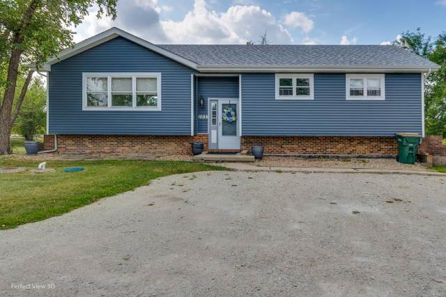 29W103 103rd Street, Naperville, IL 60564 (MLS #11220234) :: Charles Rutenberg Realty