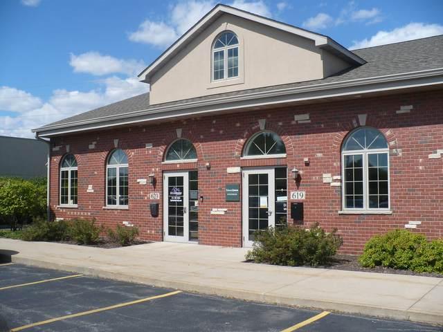 623 W Mondamin Street, Minooka, IL 60447 (MLS #11220236) :: The Wexler Group at Keller Williams Preferred Realty