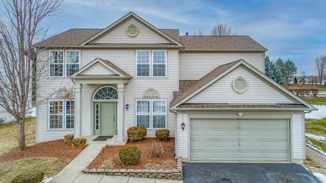 197 Lilac Street, Bolingbrook, IL 60490 (MLS #11220419) :: Ryan Dallas Real Estate