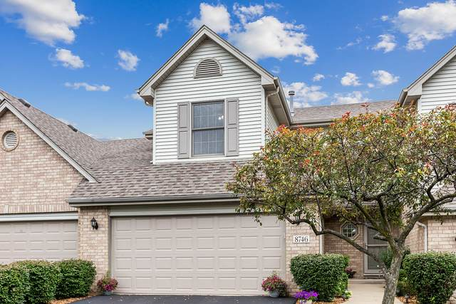 8746 Golden Rose Drive, Orland Park, IL 60462 (MLS #11220901) :: Littlefield Group