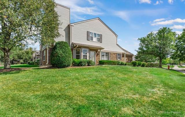 1750 Autumn Avenue A, Schaumburg, IL 60193 (MLS #11221046) :: John Lyons Real Estate