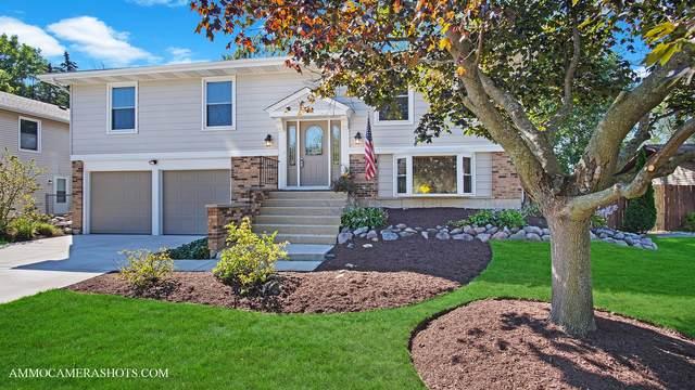 304 Byron Avenue, Bloomingdale, IL 60108 (MLS #11221166) :: Littlefield Group