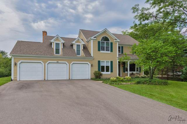 45 Gentry Drive, Hawthorn Woods, IL 60047 (MLS #11221356) :: Touchstone Group