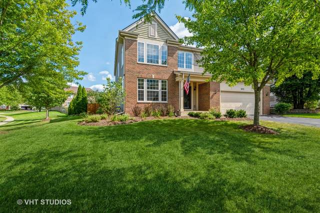 101 Savoy Drive, Cary, IL 60013 (MLS #11221476) :: Littlefield Group