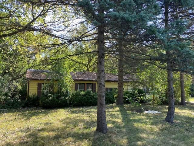 35485 N Northern Avenue, Waukegan, IL 60085 (MLS #11221497) :: Ryan Dallas Real Estate