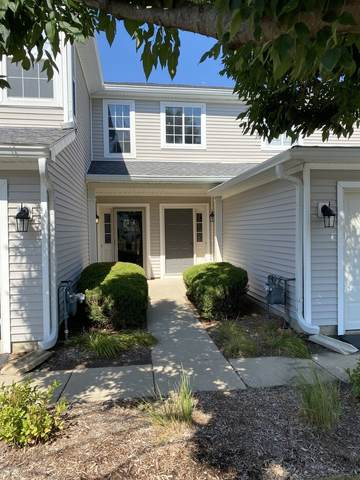 6923 Clearwater Drive, Plainfield, IL 60586 (MLS #11221509) :: The Wexler Group at Keller Williams Preferred Realty