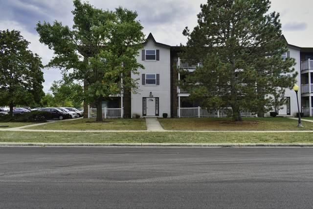 105 Gregory Street #02, Aurora, IL 60504 (MLS #11221610) :: Ryan Dallas Real Estate