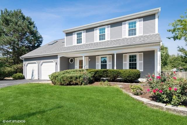1669 Dartmouth Court, Naperville, IL 60565 (MLS #11221674) :: Angela Walker Homes Real Estate Group
