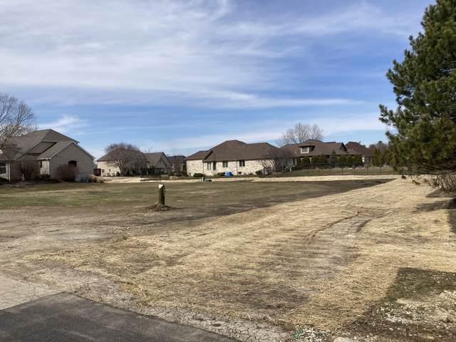 LOT 39 Stone Haven Lane, Homer Glen, IL 60491 (MLS #11221702) :: The Wexler Group at Keller Williams Preferred Realty