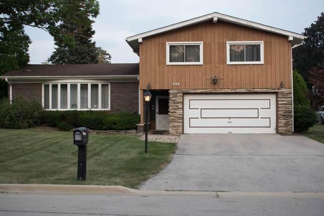 229 Sherwood Drive, Wood Dale, IL 60191 (MLS #11221748) :: Touchstone Group