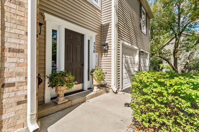 530 River Front Circle #606, Naperville, IL 60540 (MLS #11221784) :: Littlefield Group