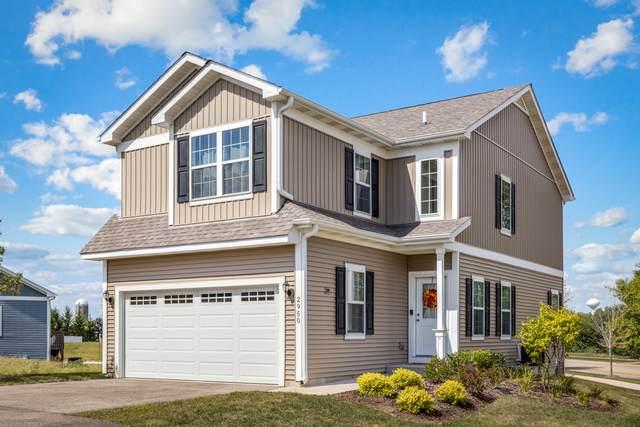 2950 Payton Crossing, Johnsburg, IL 60051 (MLS #11222025) :: Ani Real Estate
