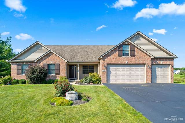 6227 S Woods Court, Yorkville, IL 60560 (MLS #11222085) :: The Wexler Group at Keller Williams Preferred Realty