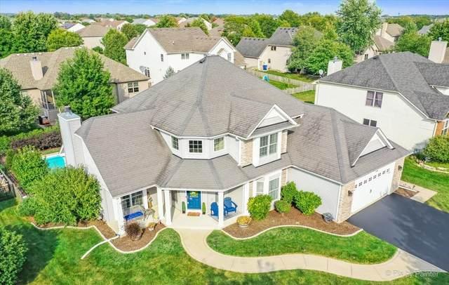 978 Citizen Avenue, Elburn, IL 60119 (MLS #11222109) :: Littlefield Group