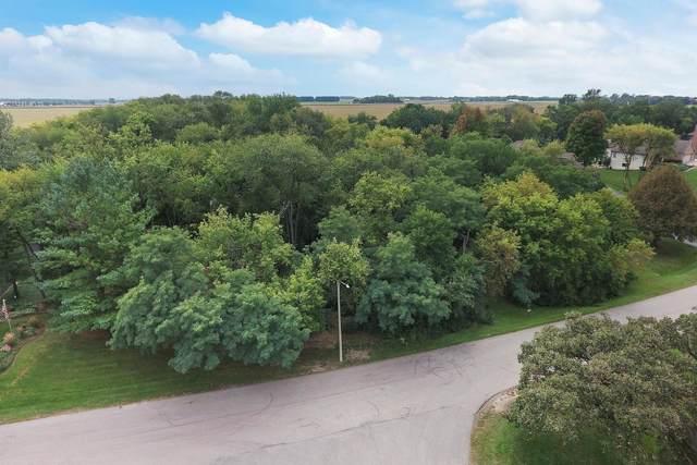 3813 Prairie Drive, Spring Grove, IL 60081 (MLS #11222161) :: RE/MAX IMPACT