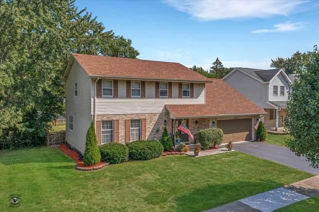907 Hamlin Avenue, Flossmoor, IL 60422 (MLS #11222190) :: Ryan Dallas Real Estate