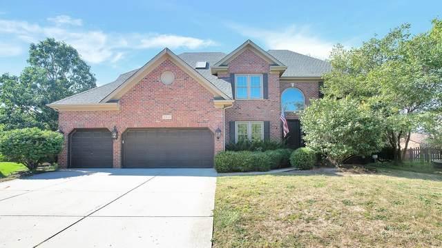 3919 Mistflower Court, Naperville, IL 60564 (MLS #11222209) :: Ryan Dallas Real Estate