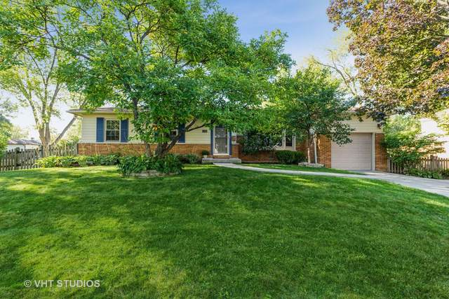 1507 E Rosita Drive, Palatine, IL 60074 (MLS #11222336) :: The Wexler Group at Keller Williams Preferred Realty