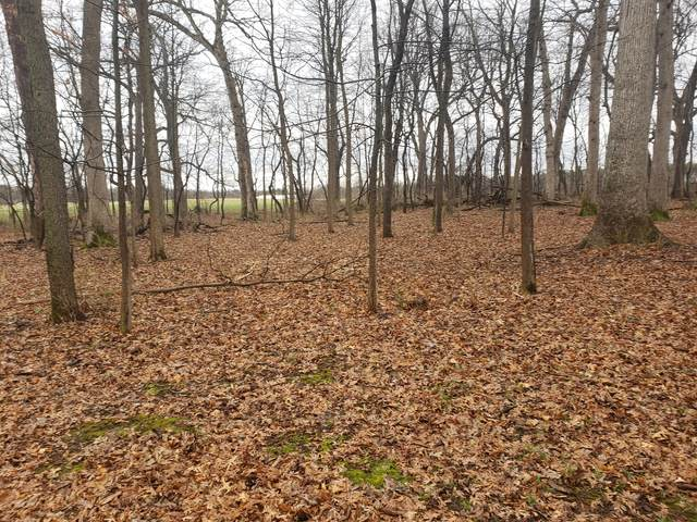 Lot 4 S Knoll Road, Rochelle, IL 61068 (MLS #11222488) :: Suburban Life Realty