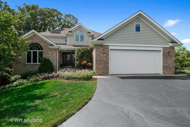 8901 Alamonte Drive, Spring Grove, IL 60081 (MLS #11222493) :: RE/MAX IMPACT