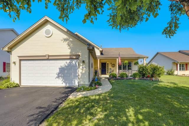 25606 S Jonquil Lane, Monee, IL 60449 (MLS #11222652) :: John Lyons Real Estate