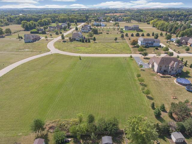 Lot 13 Andrew Street, Plano, IL 60545 (MLS #11222657) :: Rossi and Taylor Realty Group