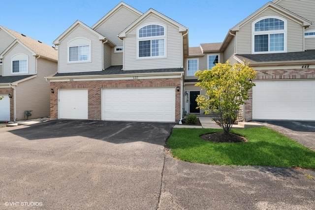 446 N Patriot Drive, Hainesville, IL 60030 (MLS #11222671) :: John Lyons Real Estate