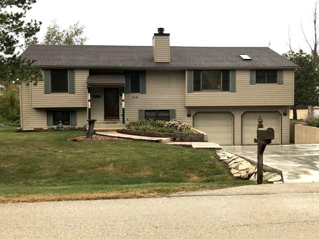 218 Tyler Creek Street, Gilberts, IL 60136 (MLS #11222828) :: Ryan Dallas Real Estate