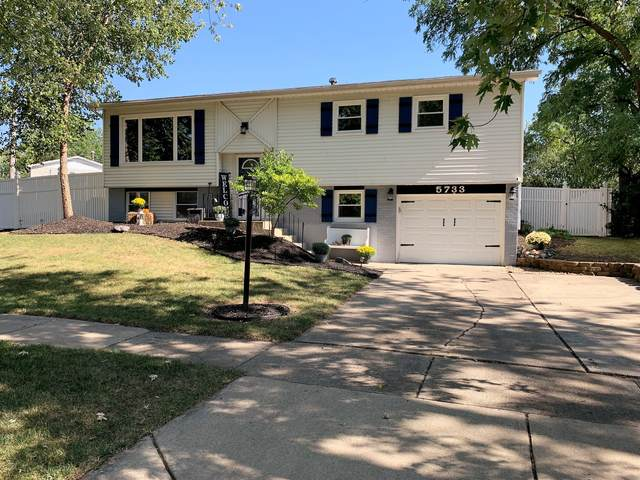5733 Victoria Drive, Oak Forest, IL 60452 (MLS #11222883) :: The Wexler Group at Keller Williams Preferred Realty