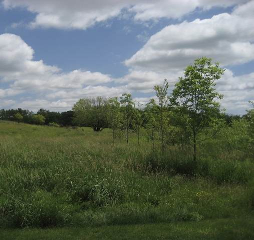 0 Powers Road, Huntley, IL 60142 (MLS #11222991) :: Lewke Partners - Keller Williams Success Realty