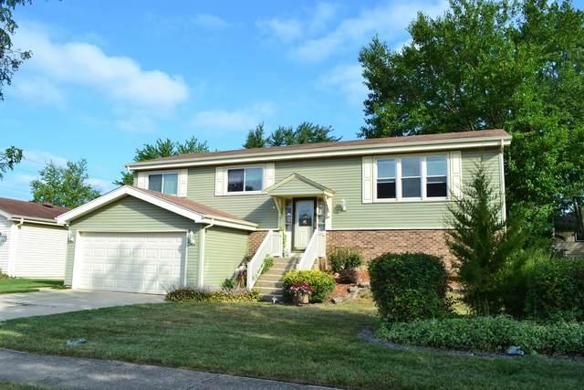 602 Cochise Circle, Bolingbrook, IL 60440 (MLS #11223007) :: Ryan Dallas Real Estate