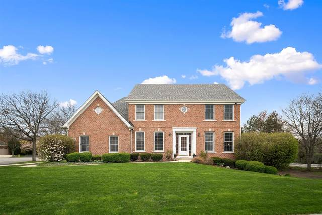 26W185 Meadowview Court, Wheaton, IL 60187 (MLS #11223023) :: The Wexler Group at Keller Williams Preferred Realty