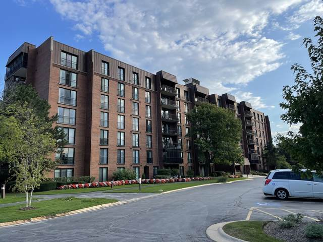 111 Acacia Drive #105, Indian Head Park, IL 60525 (MLS #11223138) :: Littlefield Group