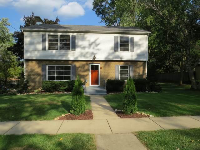53 S Union Street, Elgin, IL 60123 (MLS #11223243) :: Ryan Dallas Real Estate