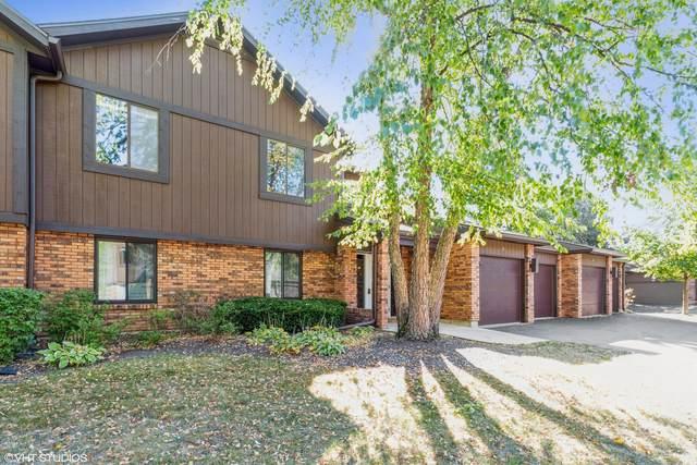 40 Creekside Circle B, Elgin, IL 60123 (MLS #11223250) :: Ryan Dallas Real Estate