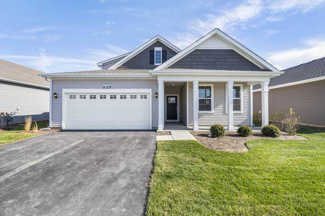 1103 Selwyn Parkway, North Aurora, IL 60542 (MLS #11223253) :: Ryan Dallas Real Estate