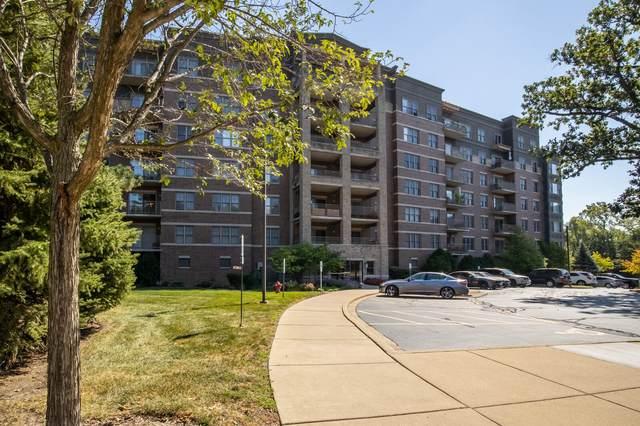 125 Lakeview Drive #206, Bloomingdale, IL 60108 (MLS #11223286) :: John Lyons Real Estate