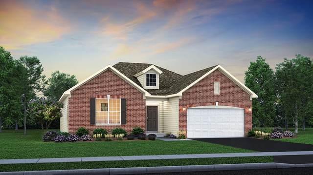 2011 Rosehall Drive, Joliet, IL 60431 (MLS #11223340) :: John Lyons Real Estate