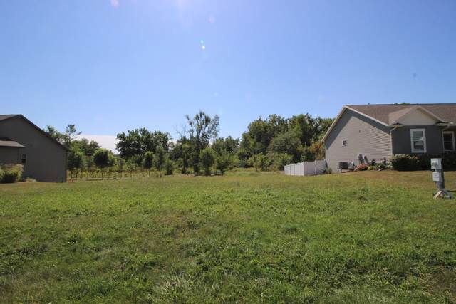 Lot 39 Dode Drive, Downs, IL 61736 (MLS #11224100) :: Rossi and Taylor Realty Group