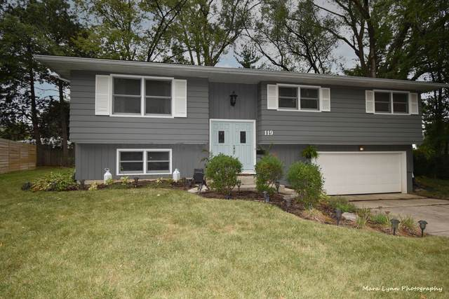 119 Fairview Drive, St. Charles, IL 60174 (MLS #11224323) :: The Dena Furlow Team - Keller Williams Realty