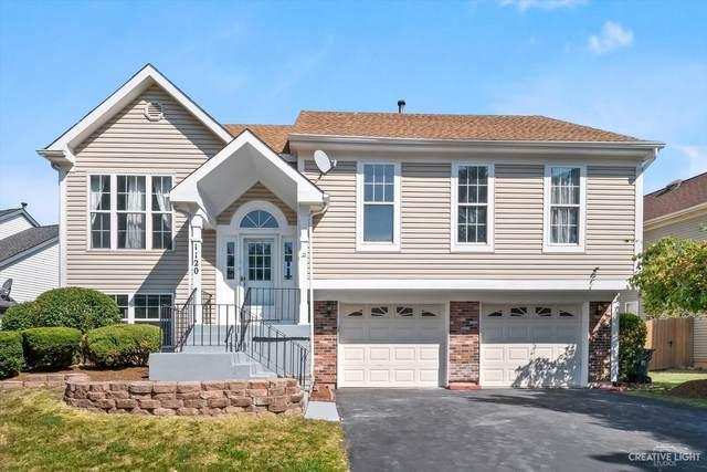 1120 Ironwood Drive, Elgin, IL 60120 (MLS #11224438) :: Littlefield Group