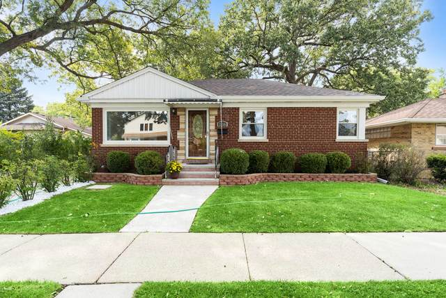 2450 Forest View Avenue, River Grove, IL 60171 (MLS #11224526) :: Jacqui Miller Homes