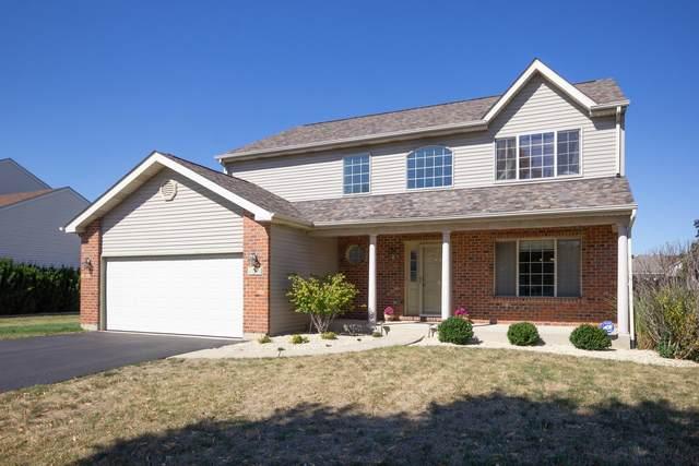 3 Raven Court, Bolingbrook, IL 60490 (MLS #11224565) :: John Lyons Real Estate