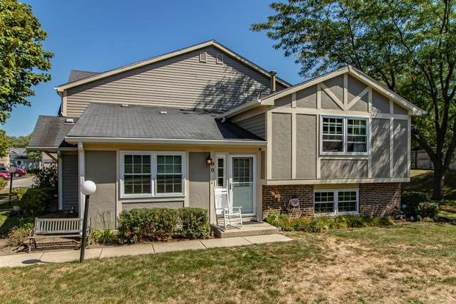 90 Maplewood Drive, Vernon Hills, IL 60061 (MLS #11224633) :: Littlefield Group